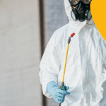 DIY Pest Control Tips For All Pests