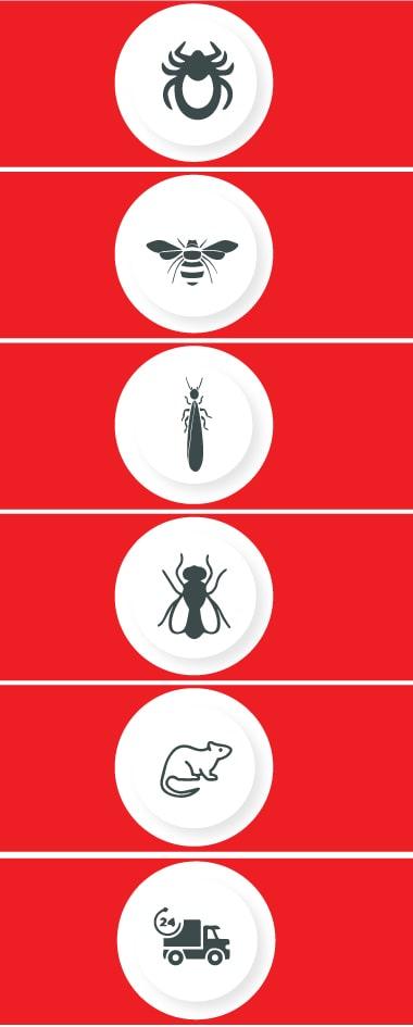 Best Pest Control Logan